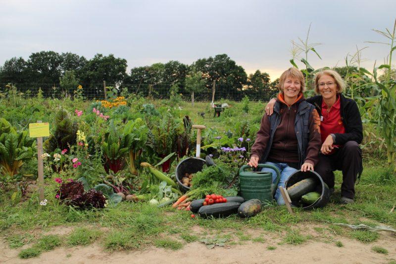 13. Mai Saison Start Sannmann Gemüsegärten auf Hof Eggers