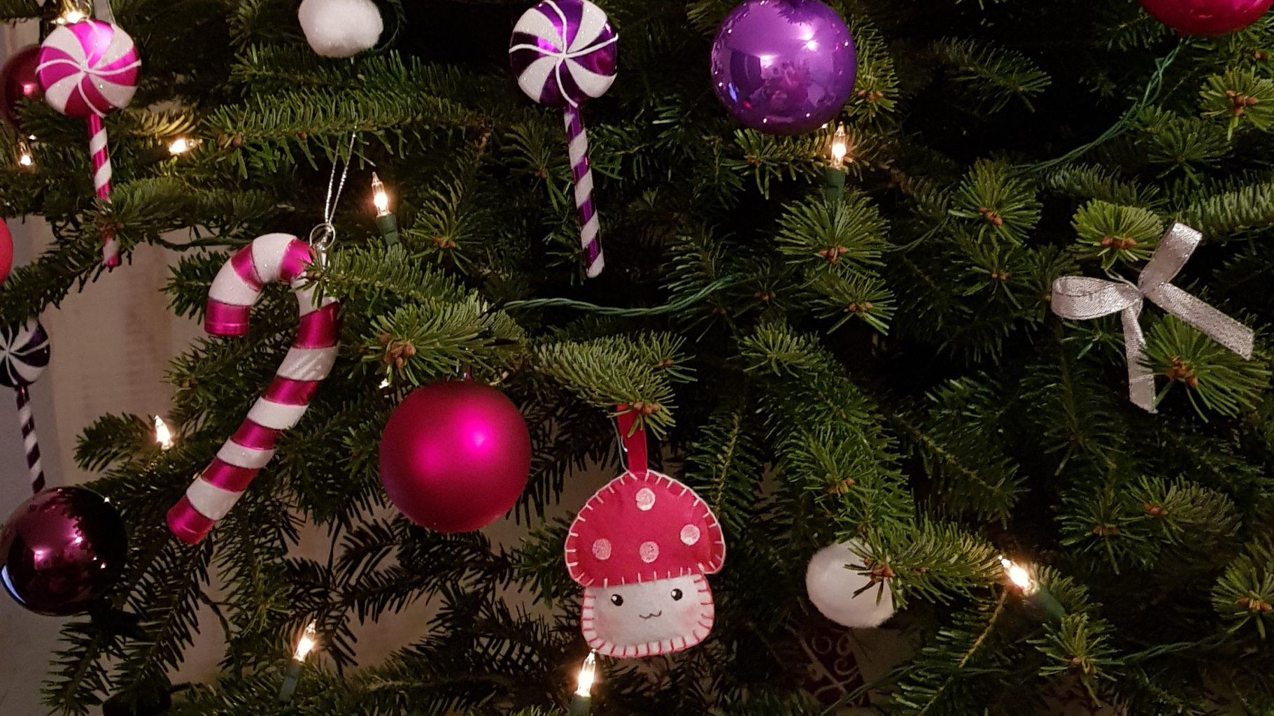 Bio Weihnachtsbaum macht alles schöner
